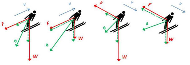 What is a good thesis for a paper on the physics behind skiing?